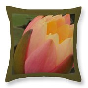 Beautiful Unfolding Throw Pillow