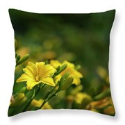 Beautiful Vibrant Yellow Lily Flower In Summer Sun Throw Pillow