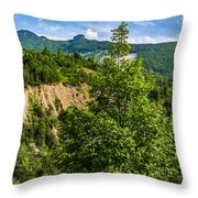 Nature Taking Back Its Place At Vajont Dam Throw Pillow