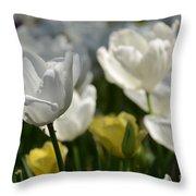 Beautiful White Tulips Throw Pillow