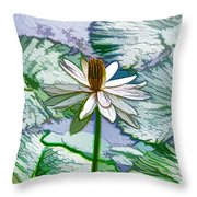 Beautiful White Water Lilies Flower Throw Pillow