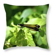 Beautiful Wings Throw Pillow