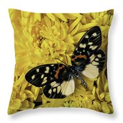 Beautiful Wings On Yellow Mums Throw Pillow