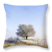 Beautiful Winter Background With Snow Tipped Trees Throw Pillow