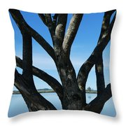 Beautiful Winters Day Throw Pillow