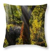 Beautiful Woodlands Throw Pillow