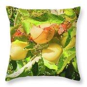 Beautiful Yellow Apple Throw Pillow