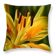 Beautiful Yellow Lily Throw Pillow