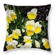 Beautiful Yellow Pansies Throw Pillow