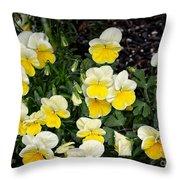 Beautiful Yellow Pansies Throw Pillow by Eva Thomas