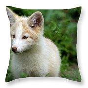 Beautiful Young Fox Portrait Throw Pillow