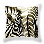 Beautiful Zebras Throw Pillow