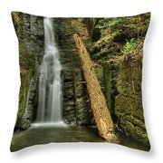 Beautifully Confined Throw Pillow by Evelina Kremsdorf