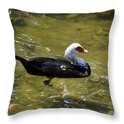Beautifully Homely Throw Pillow