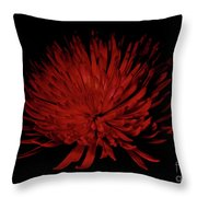 Beauty 2 Throw Pillow