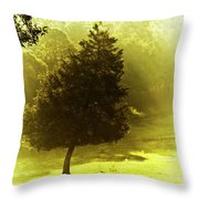 Beauty A Ray Makes Throw Pillow