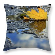 Beauty Above And Below Me Throw Pillow