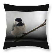 Beauty And Ice Throw Pillow