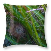Beauty And Intricacy Throw Pillow