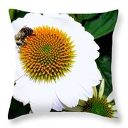 Beauty And The Bee #2 Throw Pillow