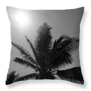 Beauty And The Palms In  Dominican Republic  Throw Pillow