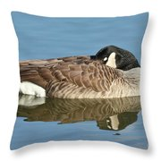 Beauty At Rest Throw Pillow