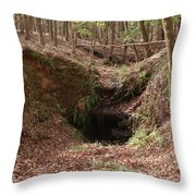 Beauty Below Throw Pillow