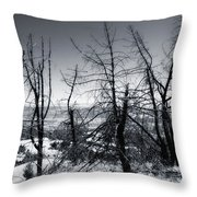 Beauty  Beyond The Fire Throw Pillow