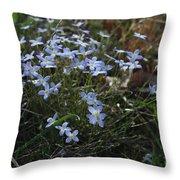 Beauty Blue Flowers Throw Pillow