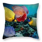 Beauty Contest Throw Pillow