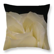 Beauty Created Throw Pillow
