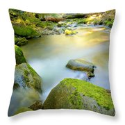 Beauty Creek Throw Pillow