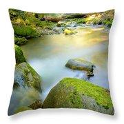 Beauty Creek Throw Pillow