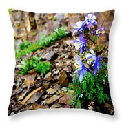 Beauty Elevated Throw Pillow