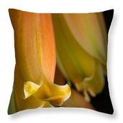Beauty Evolves Into Harmony Throw Pillow