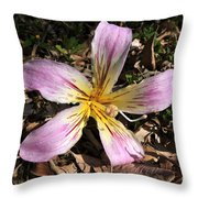 Beauty From Above Throw Pillow