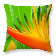 Beauty From The Sun Throw Pillow