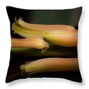 Beauty Hope And Strength Throw Pillow
