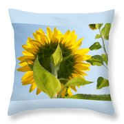 Beauty However You Look At It Throw Pillow