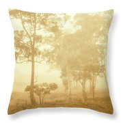 Beauty In A Forest Fog Throw Pillow