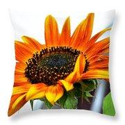 Beauty In A Sunflower Throw Pillow