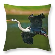 Beauty In Flight Throw Pillow