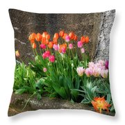 Beauty In Ruins Throw Pillow by Michael Hubley