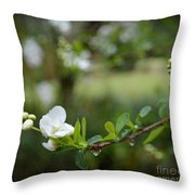 Beauty In Simple Things Throw Pillow by Eva Thomas