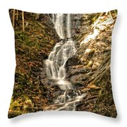 Beauty In The Berkshires Throw Pillow