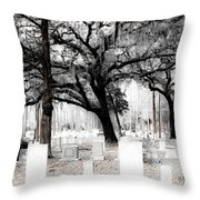 Beauty In The Bleakness Throw Pillow