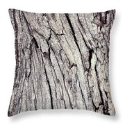 Beauty In The Cracks Of Old Wood Throw Pillow