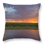 Beauty In The Eye Of The Beholder Throw Pillow