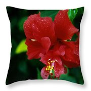 Beauty In The Jungle Throw Pillow