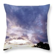 Beauty In The Morning Throw Pillow